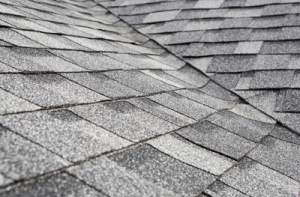 CB-2-Homebuyers-Guide-Roof